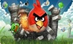 angry birds 00FA000000017060