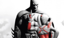Batman Arkham City head 5