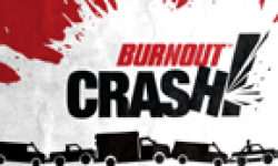 Burnout CRASH 31 08 2011 head