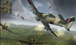 combat wings (2)
