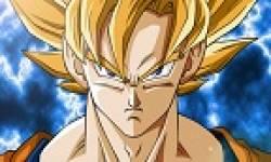 Goku 600x300