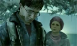 Harry Potter et les Reliques de la Mort head 3