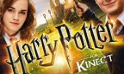 Harry Potter Kinect vignette