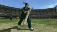 international cricket 2010 ponting_odi_01