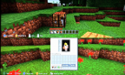 Minecraft Capture