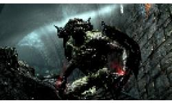 Skyrim Dawnguard DLC vignette