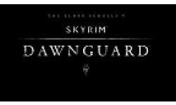Skyrim Dawnguard.vignette