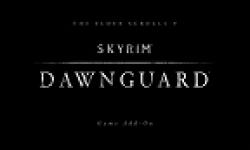 skyrim dawnguard vignette
