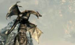 The Elder Scrolls V Skyrim head 18