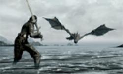 The Elder Scrolls V Skyrim head 32