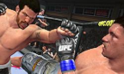 UFC Undisputed 2010 Test logo