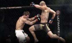 UFC vignette