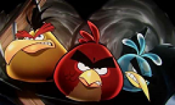 vignette head angry birds film 16052013
