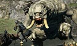 vignette head dragon dogma