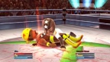 vignette-head-fire-pro-wrestling