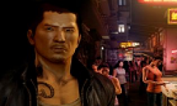 vignette head sleeping dogs 24102012