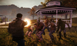 vignette head state of decay 21 12 12