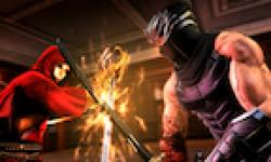 Vignette Icone Head Ninja Gaiden 3 16082011 02