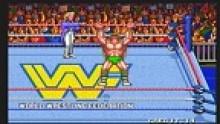 WWF WrestleFest (2)