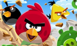 Angry Birds vignette
