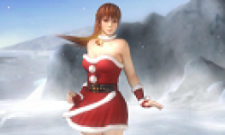 Dead or Alive 5  captures vignette
