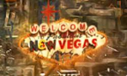 Fallout New Vegas head 2