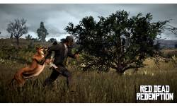 Red Dead Redemption chasse 4