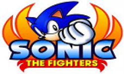 sonic the fighters vignette