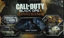 vignette head call of duty black ops ii dlc uprising 02 04 2013